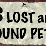 lost-pets